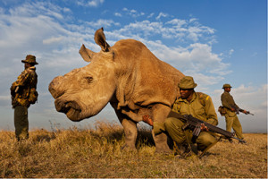 Canon_GettyImages_Brent Stirton