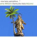#palme