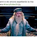 #HarryPotter20